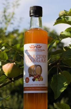 Cider Vinegar Bottle
