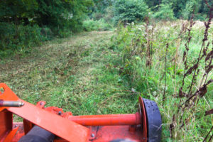 Mowing orchard