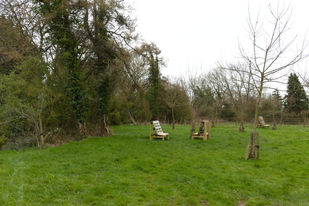 Campfire spot at Llanblethian Orchard