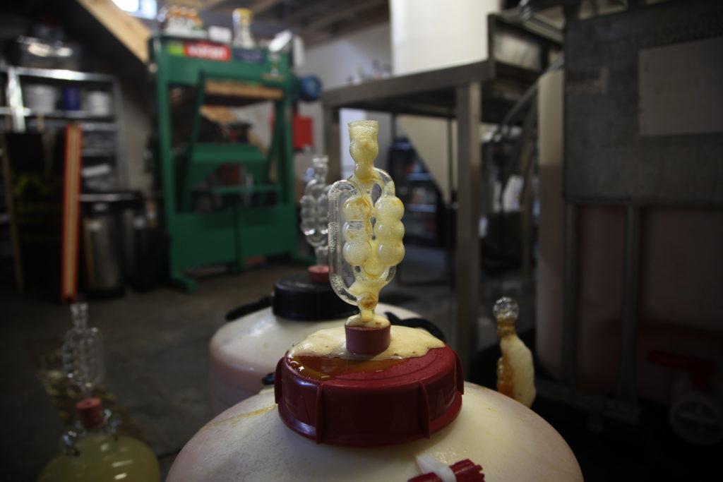15 Initial fermentation